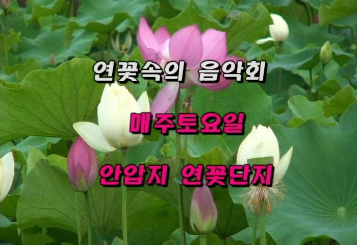 LImg_1341722524