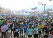 벚꽃마라톤대회 (3)