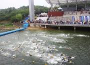 2013년도+대회(수영)
