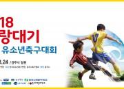 2. 화랑대기전국유소년축구대회 (1)