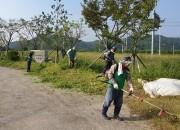 1 양북면 새마을회 복지회관 환경정비(1)